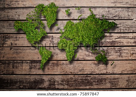 World map background with grass field and wood texture.