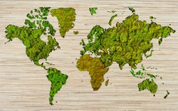 World map made of moss textures. Satin on a wooden board background. Borders of continents and countries from natural moss.