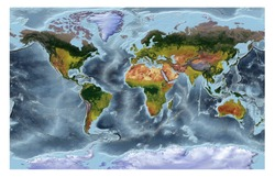 World Map showing land cover and shaded relief with a natural style and a relief shading of the oceans. Miller Cylindrical Projection