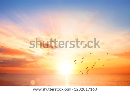 World Oceans Day concept:  Dramatic sunset with twilight color sky and clouds