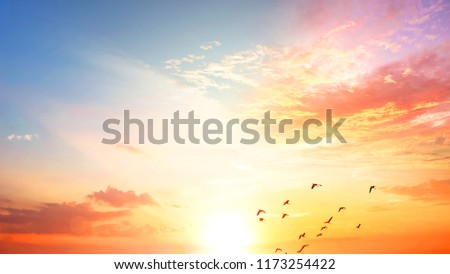 World Oceans Day concept:Sunset / sunrise with clouds