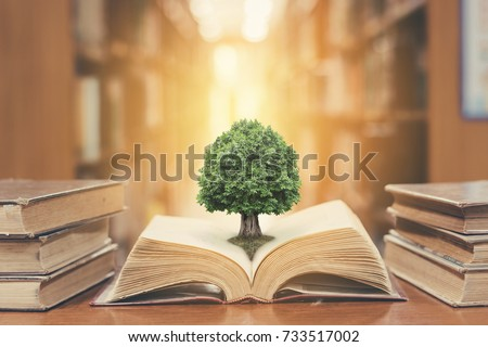 World philosophy day education concept with tree of knowledge planting on opening old big book in library with textbook, stack piles of text archive and aisle of bookshelves in school study class room