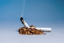 World Tobacco Control Day. A broken, smoking cigarette lies in a pile of tobacco on a blue background. Copy space. The concept of nicotine addiction and the harm of smoking.