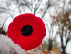 World War I Remembrance Day Veterans Day Lest We Forget,