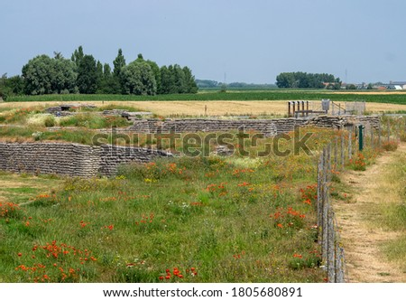 World War I trenches known as Dodengang (Trench of Death) surrounded by poppies. Located near Diskmuide, Flanders, Belgium Stock photo ©