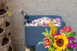 Worms can eat flowers too! A vermicomposting system (worm composter) sits on a balcony. Worms eat food scraps and produce worm castings and worm tea to be used as fertilizer. Redirect waste.