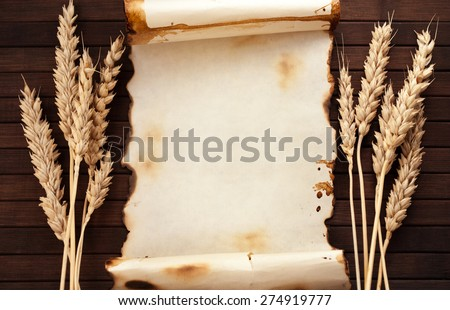 Worn out paper scroll and few ears of wheat on wooden background.
