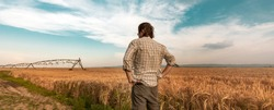 Worried farmer standing in ripe cultivated barley field while the strong wind is blowing, hoping for a better weather