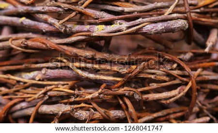 Stock Photo woven willow structure