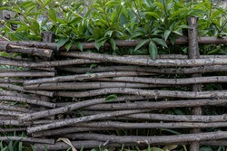woven wooden fence of twigs with green plants behind it.