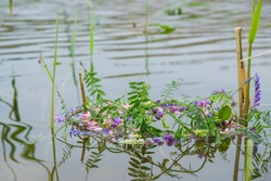 Wreath of multicolored wild flowers on the water surface in summer in Ukraine. Reflection in water.
