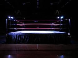 Wrestling ring light