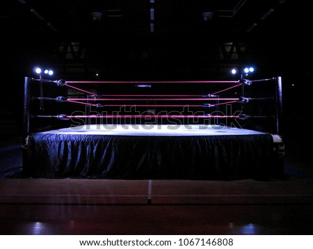 Wrestling ring light