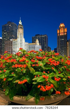 Wrigley Building and some flowers.
