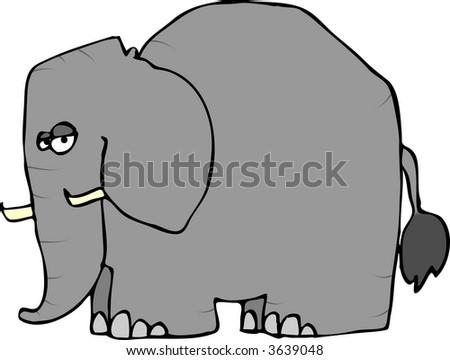 Wrinkled Elephant
