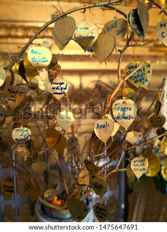 Write your wishes on the Gold Bodhi hung on the wish tree. Close up of the golden leaves of the Wish Tree #1475647691