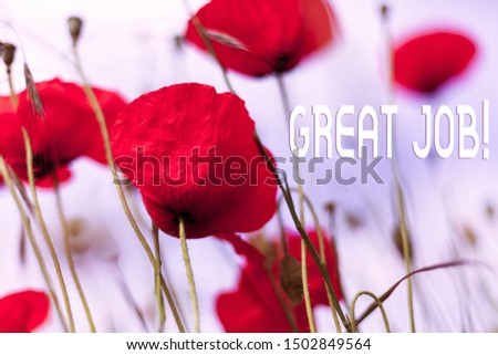 Writing note showing Great Job. Business photo showcasing used praising someone for something they have done well Front view summer red color poppy flowers sky background.