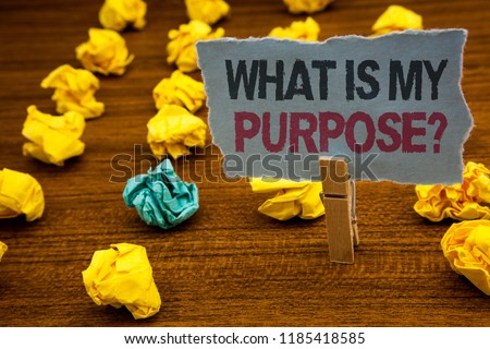Writing note showing  What Is My Purpose Question. Business photo showcasing Direction Importance Discernment Reflection Cardboard with letters wooden floor fuzzy yellow lumps green hunch.