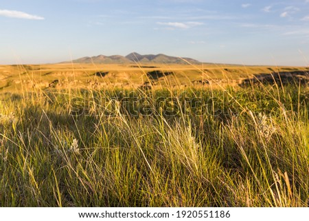 Writing on Stone Provincial Park, Alberta, Canad, with Sweet Grass Hills in the distance Foto stock ©