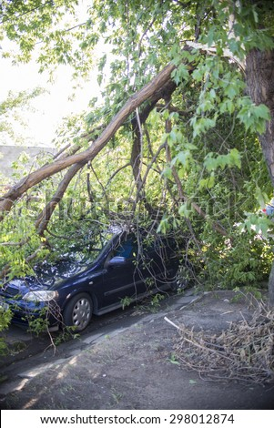 Wroclaw, Poland - July 20: Car trapped under fallen tree after wind storm on July 20, 2015 in Wrolaw, Poland #298012874
