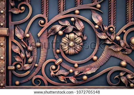 wrought-iron gates, ornamental forging, forged elements close-up. #1072705148