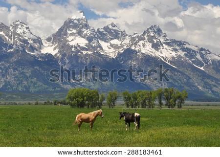 Wyoming Landscape #288183461