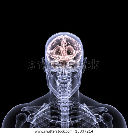 X-Ray of a male skeleton with his brain displayed. Isolated on a black background
