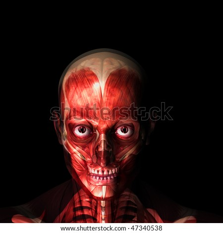 X-Ray of a male skeleton with his muscles and brain displayed with a wet, bloody feel.  Isolated on a black background