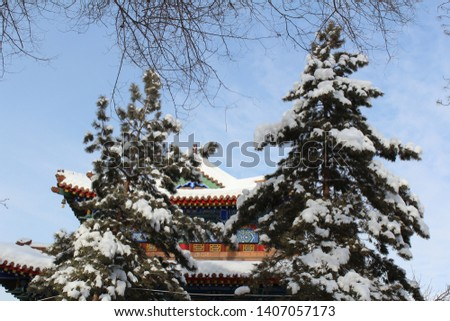 Xingjiang Urumq snow scape and  snow mountain #1407057173
