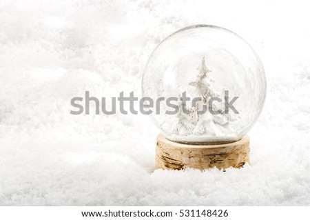 Xmas setting with Christmas tree in the woods snowglobe surrounded by white snow with three pine trees inside the globe and copy space