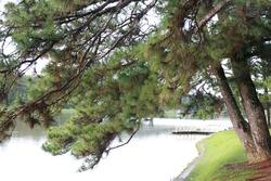 Xuan Huong lake on Dalat city