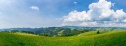 XXL Endless green landscape of black forest nature region