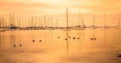 Yacht Club in the Evening Golden hour