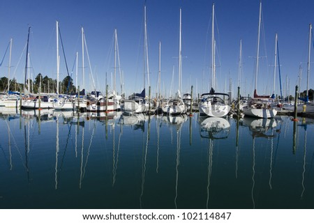 Yachts and boats in the harbor Auckland New Zealand.
