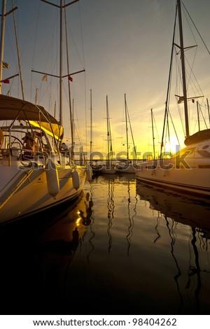 Yachts at a wharf