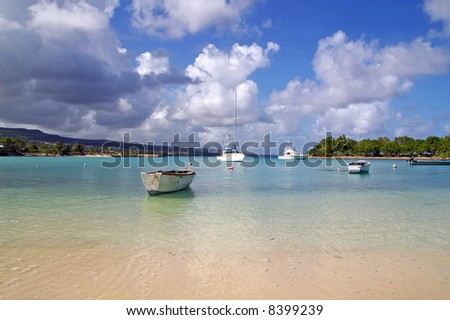 yachts docked at a tropical harbor