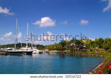 yachts docked at a tropical harbor on a sunny day