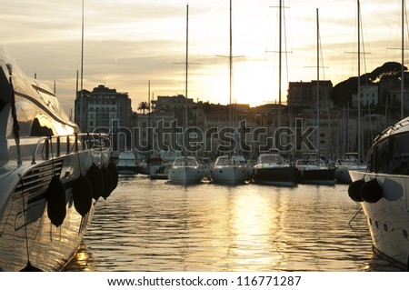 Yachts moored in Cannes at sunset. Cannes bay