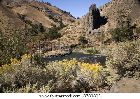 Yakima River and Desert with Yellow Flowers, Washington, Northwest
