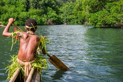 Yang sportive indigenous tribal boy with a paddle in a traditional canoe, natural green jungle with mangrove trees background, Melanesia, Papua New Guinea, Tufi
