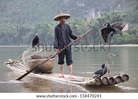 YANGSHUO, CHINA - JUNE 18: Chinese man fishing with cormorants birds in Yangshuo, Guangxi region, traditional fishing use trained cormorants to fish, June 18, 2012 Yangshuo in Guangxi, China