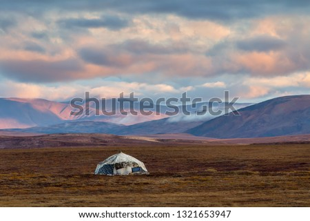 Yaranga in the tundra (traditional Chukchi dwelling of reindeer herders). Chukotka, Siberia, Far East of Russia. Dawn. Picturesque autumn spaces. Chukotka landscape with hills and beautiful clouds.