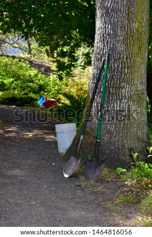 Yard work tools and gardening, hoses,