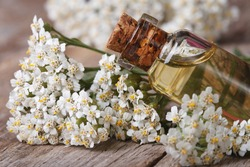 Yarrow oil in the bottle close-up on a background of flowers on the table. horizontal