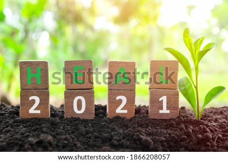 Year 2021 healing, hope, growth, life renewal, new beginnings and recovery concept. Wooden blocks heal word with growing plant at sunrise on natural background. Foto stock ©