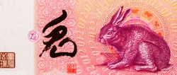 Year of the Rabbit Portrait from China Commemorative banknote.