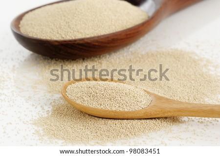 Yeast in wooden spoon