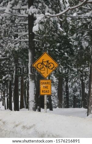 Yellow and black Share the Road cycling road sign, Highway 88, Alpine County, CA, USA.