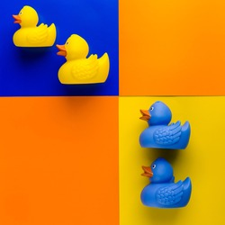 Yellow and blue rubber ducks on multicolored background. Top view