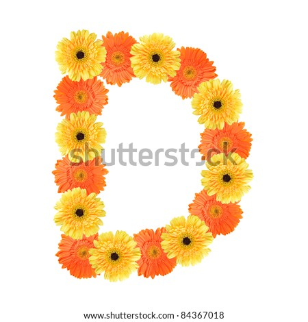 Yellow and orange daisy-gerbera create a letter D on white background ...
